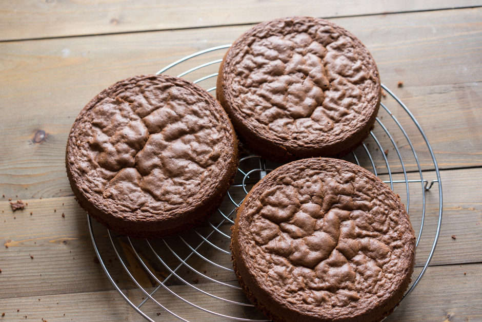 13 Tort cu ciocolata cu caise si ganas